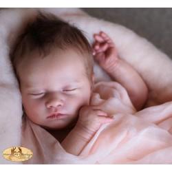 Laila endormie Realborn