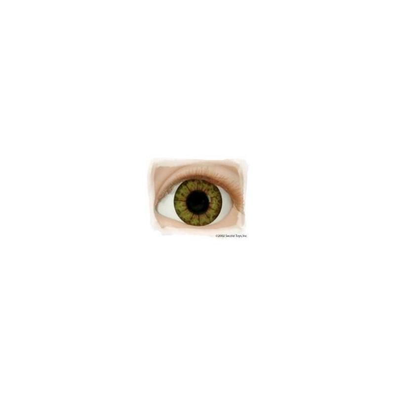 """NOISETTE """"Real Eyes"""""""